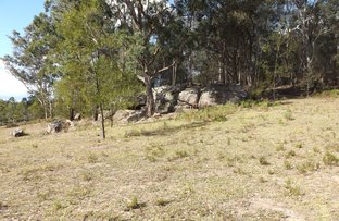 Picture of Putty Road, Garland Valley NSW 2330