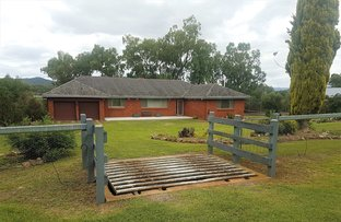 Picture of 501 BACK KOOTINGAL RD, NEMINGHA, Tamworth NSW 2340