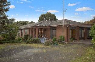 Picture of 65 Curdievale Road, Timboon VIC 3268