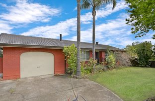 Picture of 120 Tichborne Drive, Quakers Hill NSW 2763