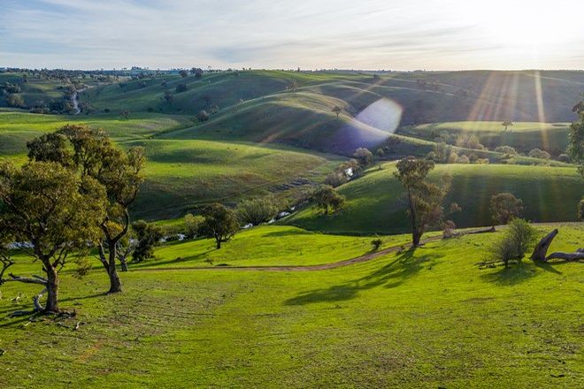 Picture of 121 Kelbri Farms, Blue Hill Road, GOLSPIE NSW 2580