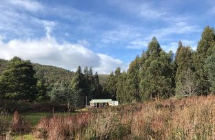 Picture of 357 Donnellys Road, Geeveston TAS 7116