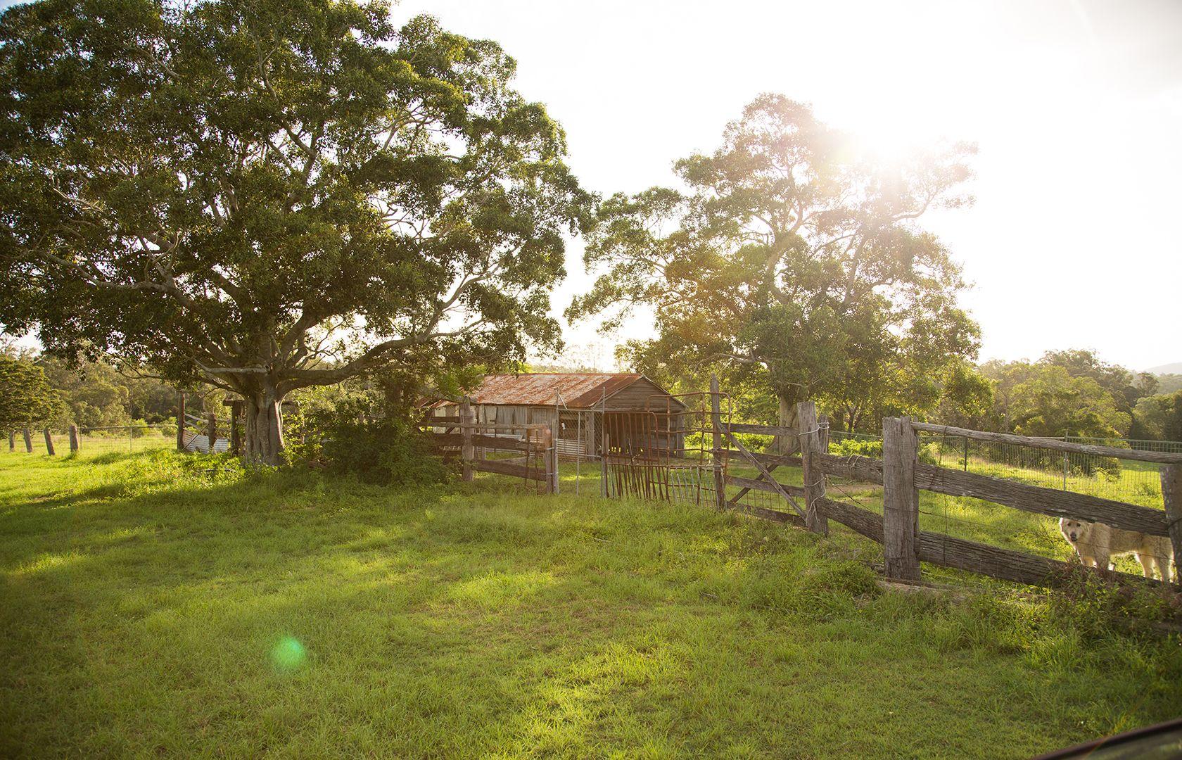 52 Maryborough Biggenden Road, Thinoomba QLD 4650, Image 1