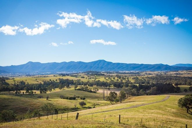 Picture of 228 Rolfe Graham Rd, MOGILLA NSW 2550