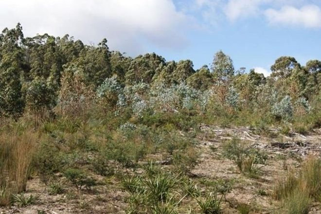 Picture of Lot 2 Strickland Rd, STRICKLAND TAS 7140
