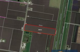 Picture of Lot 2 Rices Road, Dalmore VIC 3981