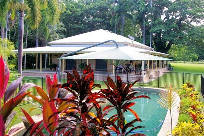 Picture of 100 Sheahans Road, LONG POCKET QLD 4850