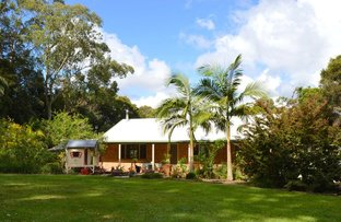 Picture of 825 Maleny-Stanley River Road, Booroobin QLD 4552