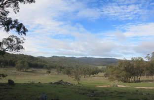 Picture of Lot 21 Halls Creek Road, Manilla NSW 2346