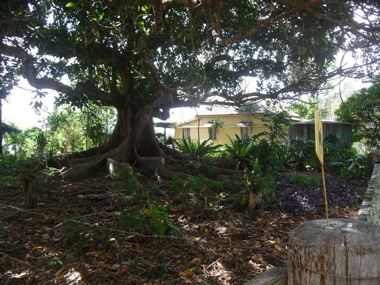 83 Blackbutt Range Road, Emu Creek QLD 4355, Image 0