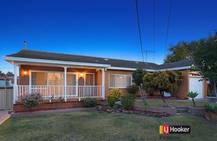 Picture of 5 Bruce Avenue, Panania NSW 2213