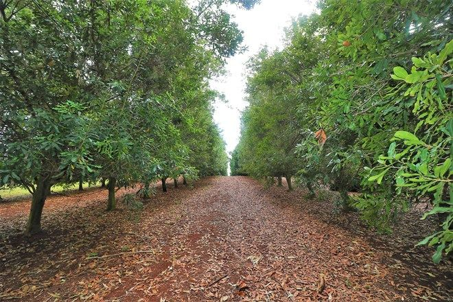 Picture of 28604 Bruce Highway, DOOLBI QLD 4660