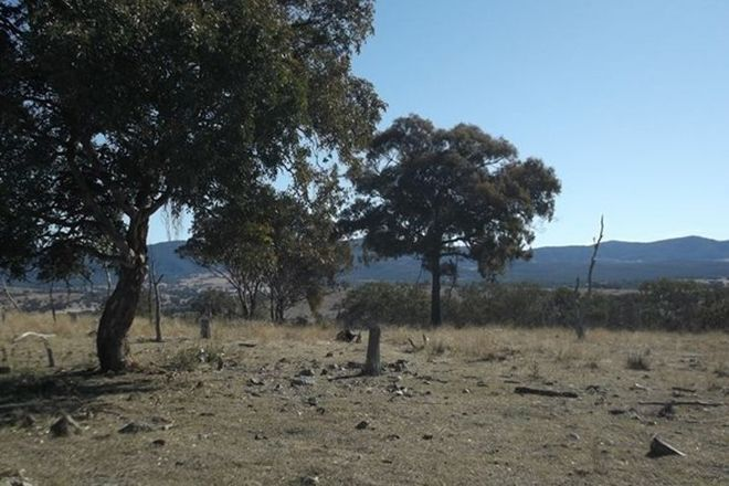 Picture of Lot 563 Tarban Road, TENTERFIELD NSW 2372