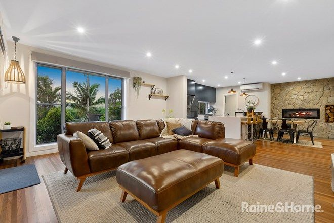 Picture of 29 McLeod Street, CONDONG NSW 2484