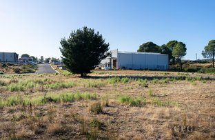 Picture of 17 Fitzgeralds Close, Castlemaine VIC 3450