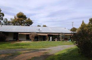 79 Nangunia St, Barooga NSW 3644