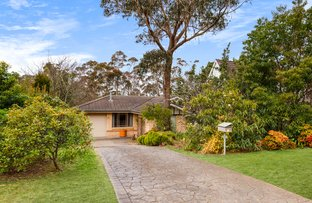 Picture of 45 Hill Street, Wentworth Falls NSW 2782