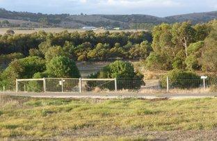 Picture of 57 Sun Orchid Drive, Hayborough SA 5211
