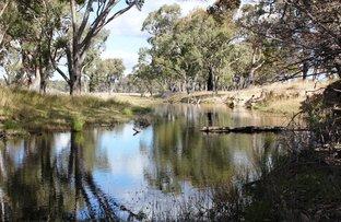 Picture of 'Raino' 966 Grove Rd, Inverell NSW 2360