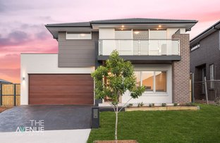 Picture of 38 Jonagold  Terrace, Box Hill NSW 2765