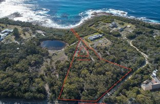 Picture of 101/141 Harveys Farm Road, Bicheno TAS 7215