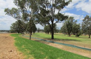 Picture of Lot 1007 Turnberry Avenue, Cessnock NSW 2325