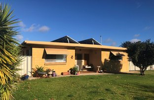 Picture of 11 Thornton Ave, Warren NSW 2824