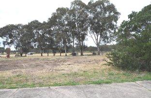 Picture of Lot 67 Pinkstone Avenue, Cootamundra NSW 2590