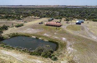 Picture of 9635 Southern Ports Highway, Beachport SA 5280