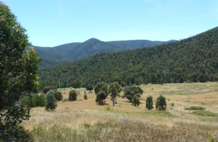 Picture of 00 Scrubby Creek Track, Omeo VIC 3898