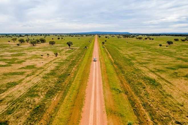 Picture of 3297 Roto Road, HILLSTON NSW 2675