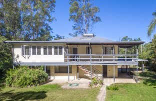 Picture of 364 Happy Jack Creek Road, Carters Ridge QLD 4563