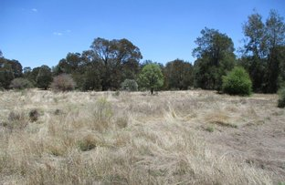 Picture of 1279 Acres Brigalow Country, The Gums QLD 4406