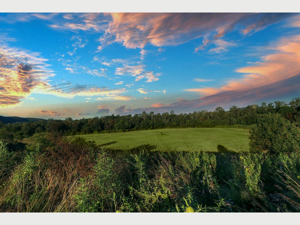 Lot 23 Haigh Crescent, Samford Valley QLD 4520, Image 1
