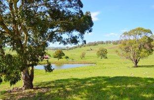 29 Reeves Road, Llangothlin NSW 2365