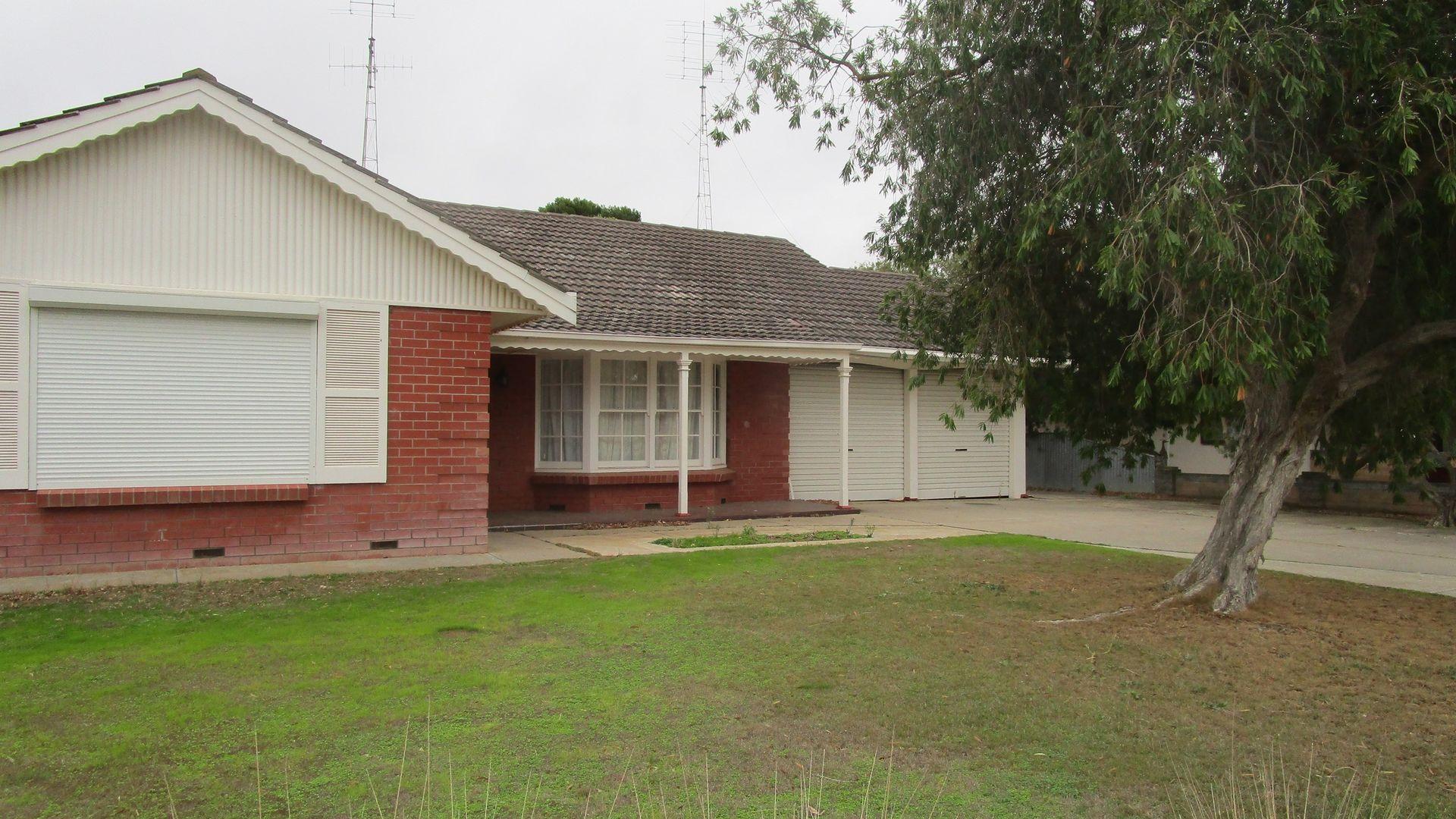 91 Chandos Terrace, Lameroo SA 5302, Image 2