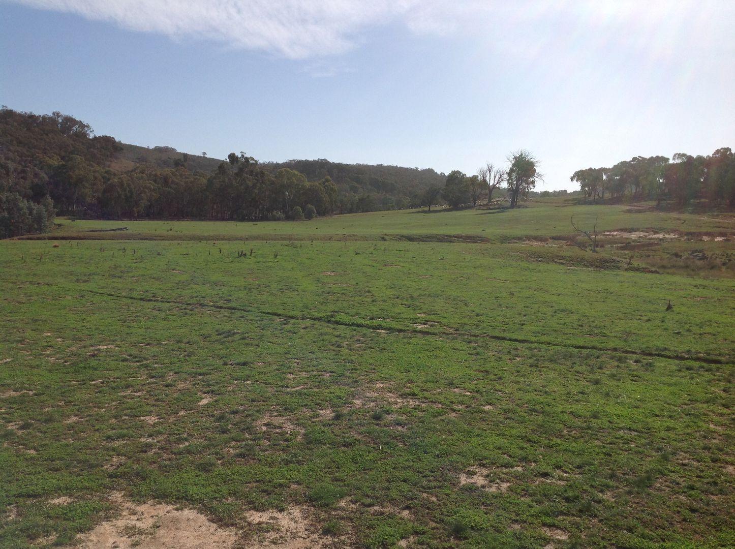 90 Colandal Lane, Rye Park NSW 2586, Image 0