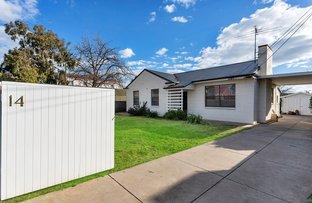 Picture of 14 Launceston Avenue, Warradale SA 5046