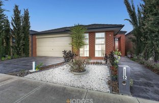 Picture of 12 Fortune Street, Truganina VIC 3029