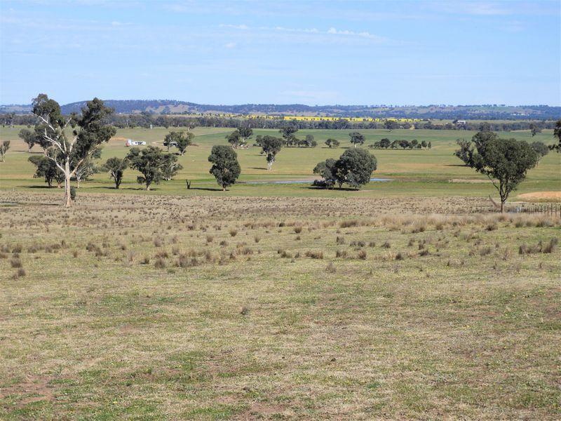125 Grounds Road, Murringo NSW 2586, Image 1