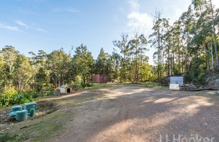 Picture of 291 Kelcey Tier Road, Eugenana TAS 7310