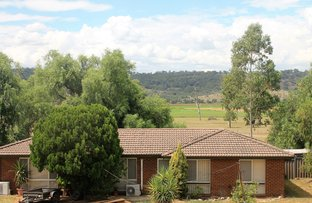 Picture of 12-14 Pagan Street, Jerrys Plains NSW 2330