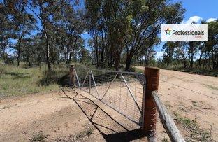 Rooneys Creek Kempton Road, Inverell NSW 2360