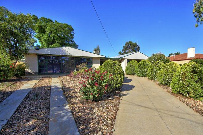 Picture of 50 KOKODA TERRACE, LOXTON SA 5333