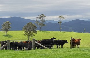 Picture of Lot 5 Ebsworth Road, Glen Martin NSW 2321