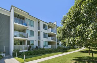 Picture of 204/20 Egmont Street, Sherwood QLD 4075