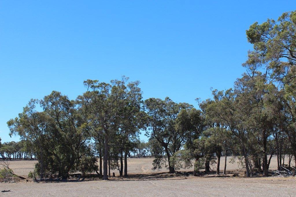 Mount Barker WA 6324, Image 2