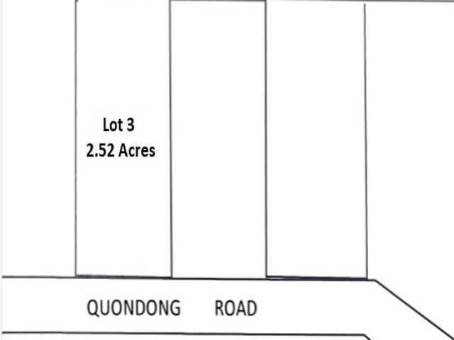 Lot 3 QUONDONG ROAD, Grenfell NSW 2810, Image 2
