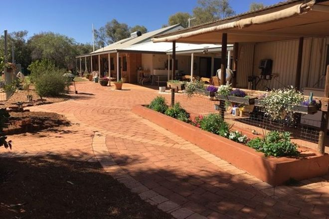 Picture of 145 Heenan Rd, ROSS NT 0873