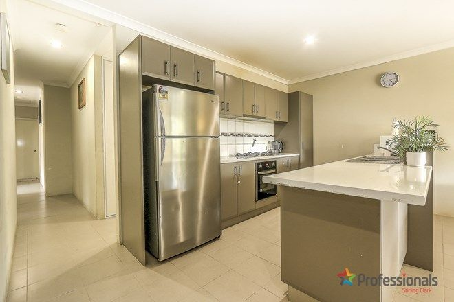 Picture of 1/5 Pulchella Street, WATTLE GROVE WA 6107